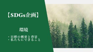 【SDGs企画】(環境)